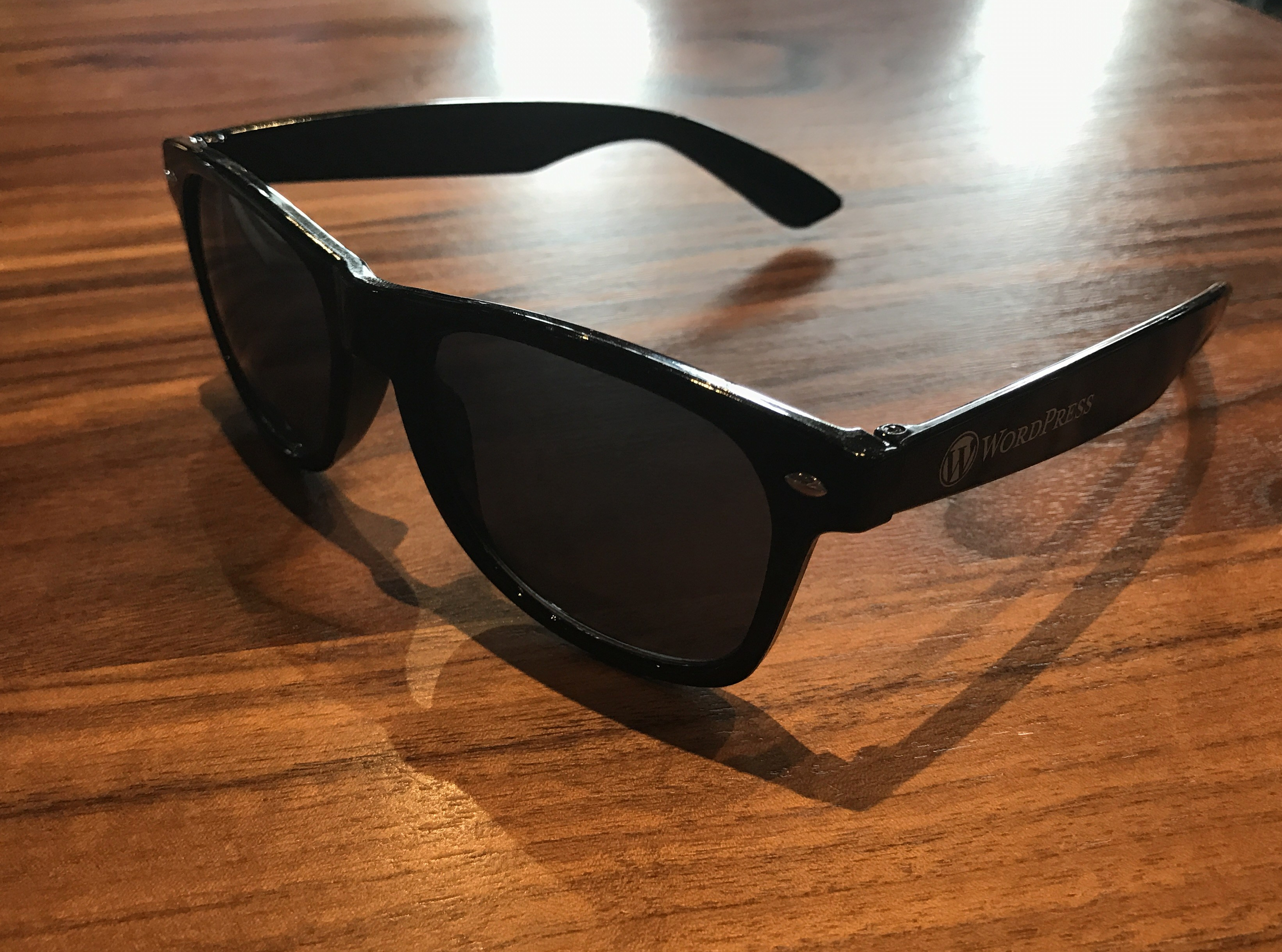 WordPress Sunglasses in Black